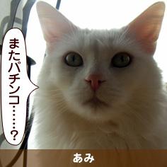 080601_touko