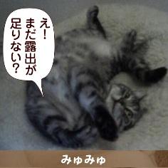 080806_touko