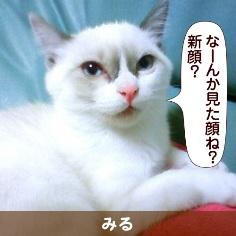 080811_touko