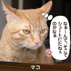 091218_touko
