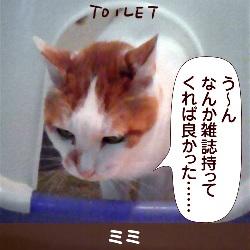 091221_touko
